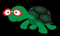 Turtle-med